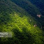 طبیعت زیبای جنگل ابر – شاهرود